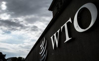 La Seguridad Nacional y la OMC